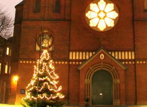 weihnachtsbaum-2014